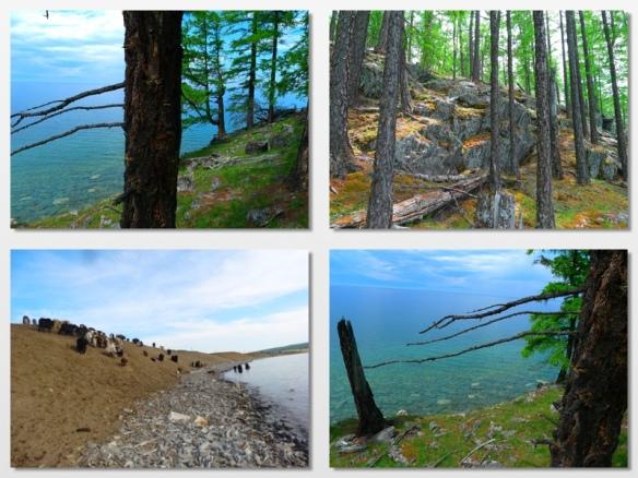 husgol lake 9 mongolia